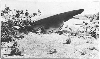 Der UFO Absturz in Roswell
